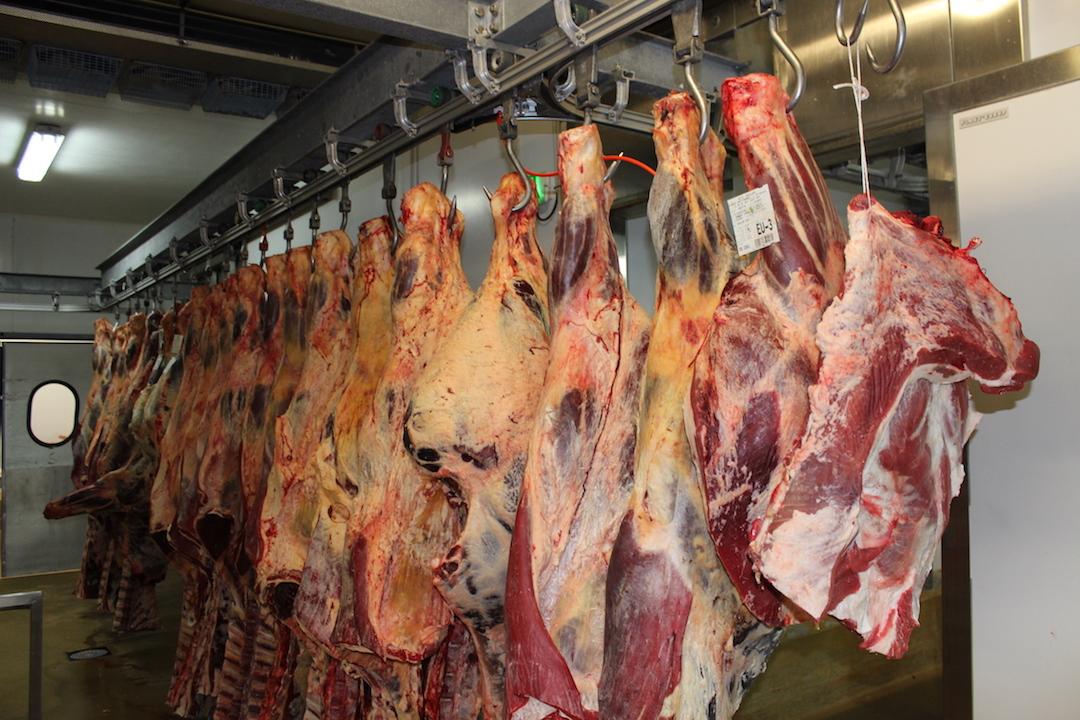 viande carcasse